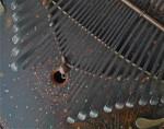 共鳴弦付の特大カリンバKC3V0006